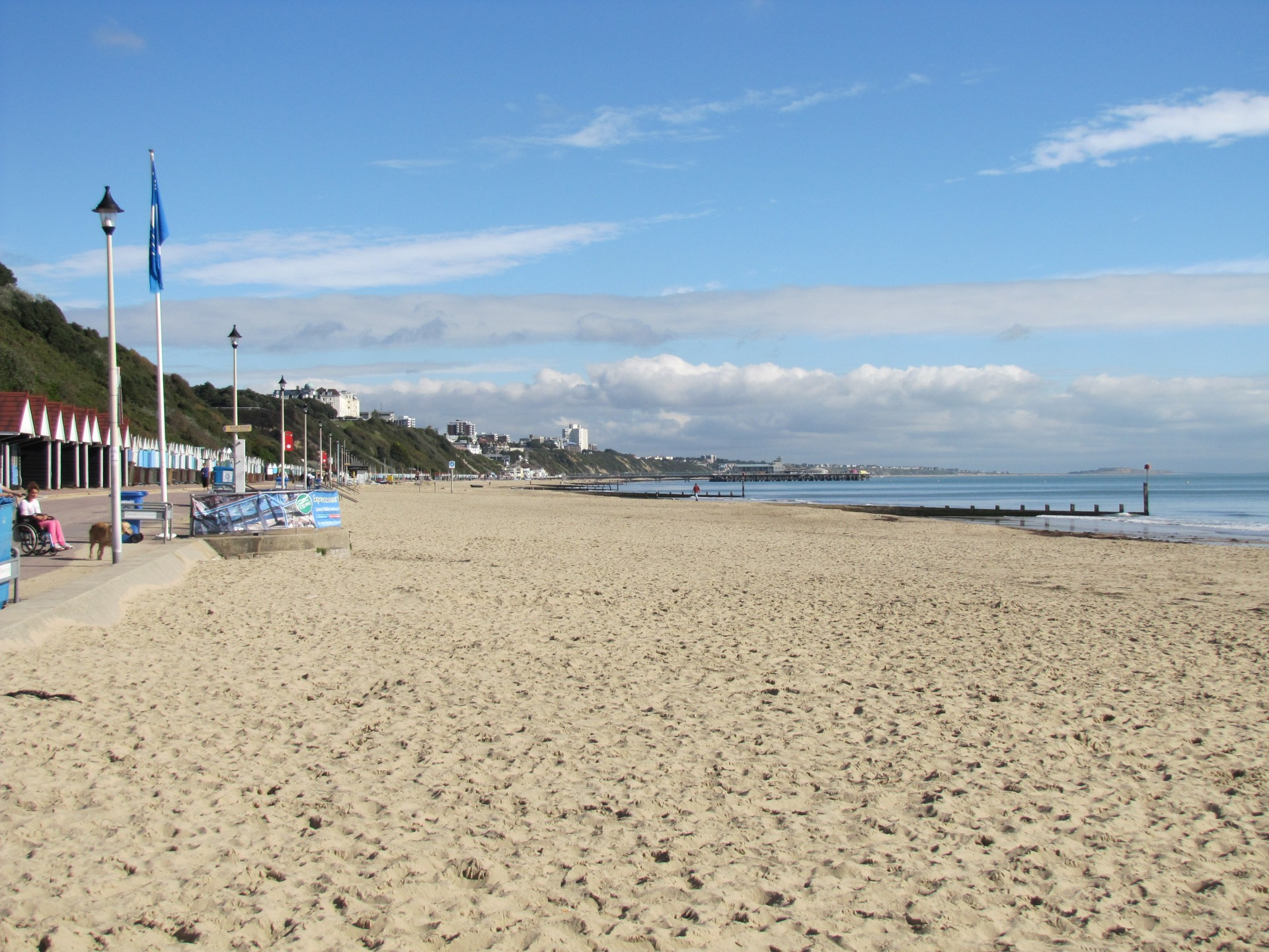 Can Dogs Go To The Beach Bournemouth